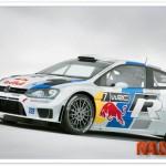 Marcus Gronholm probó el Polo WRC