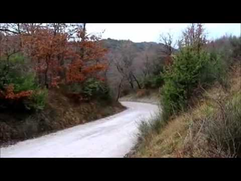Video, test del Skoda Fabia R5
