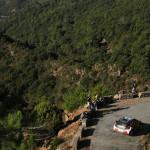 WRC: ¿sólo la mitad de los puntos?