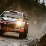 WRC 2016: un Mundial de transición