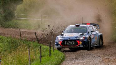 Fotos-Rallye-Polonia-2017-Thierry-Neuville