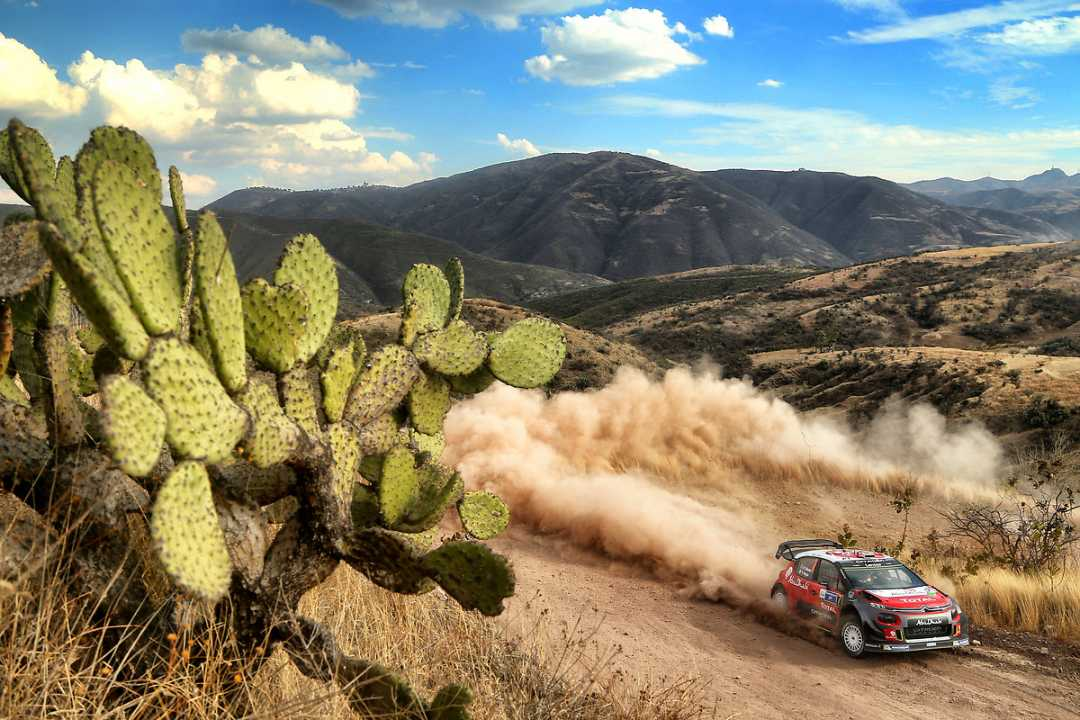 """Sébastien Loeb: """"No tengo ni idea de dónde estoy respecto a los otros pilotos"""""""